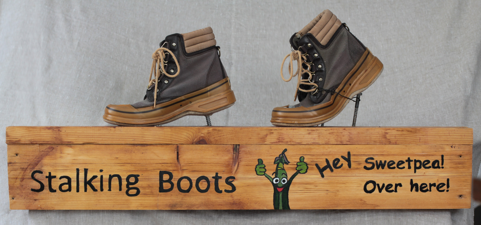 boots-2107